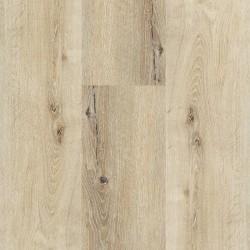 Spirit Pro Click Comfort 55 Planks Country Honey 60001433